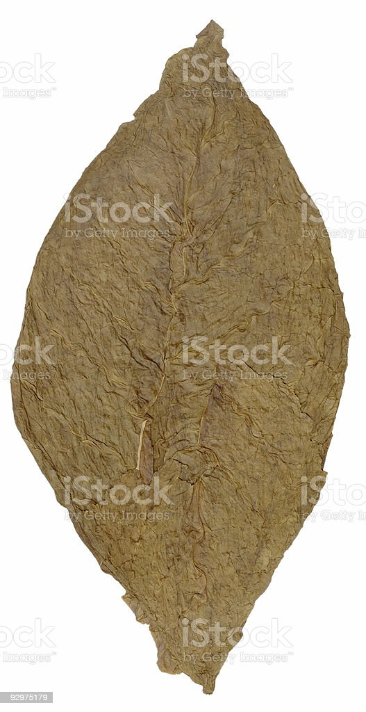 tobacco dried leaf royalty-free stock photo