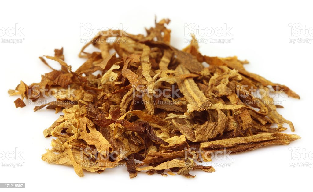 Tobacco for making cigarette royalty-free stock photo