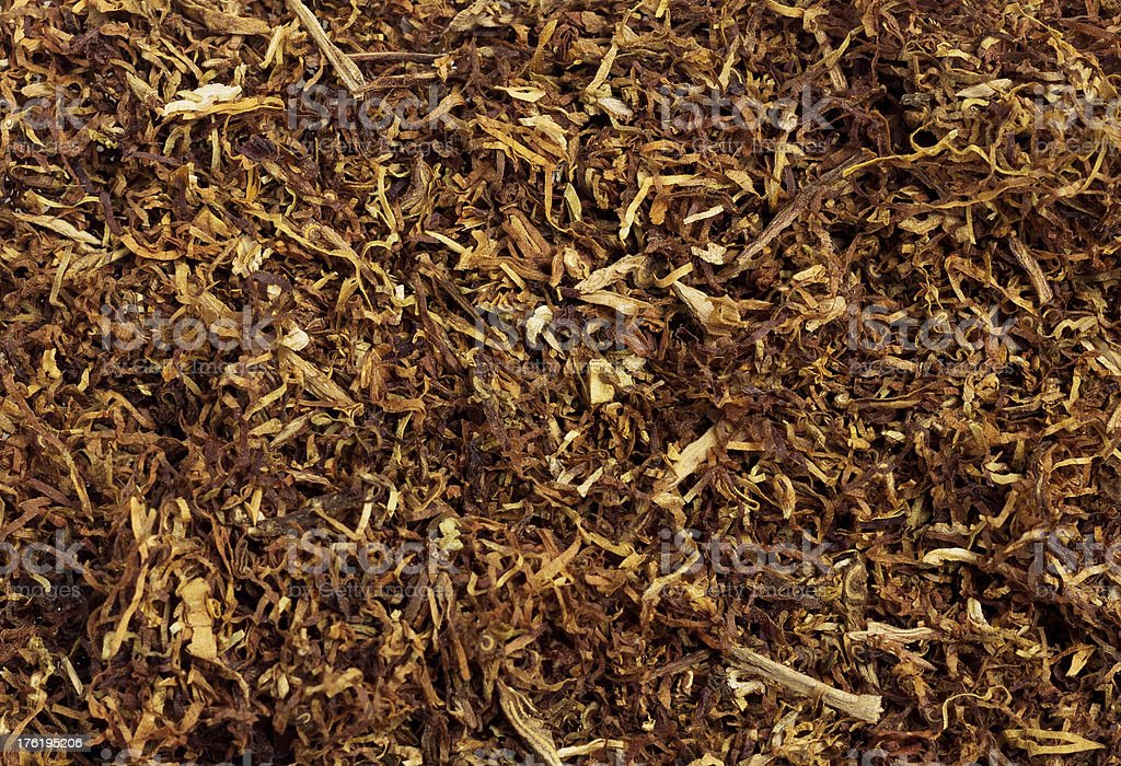 Tobacco royalty-free stock photo