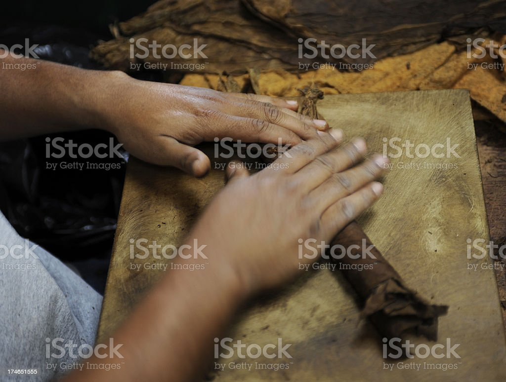 Tobacco roller stock photo