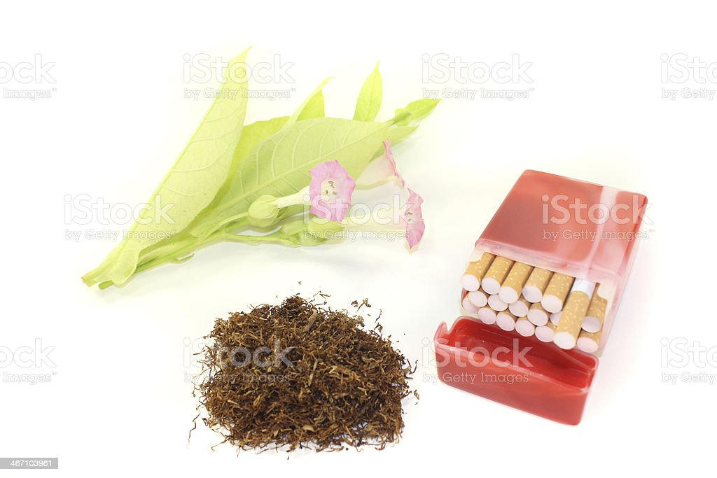 Tobacco with cigarettes royalty-free stock photo