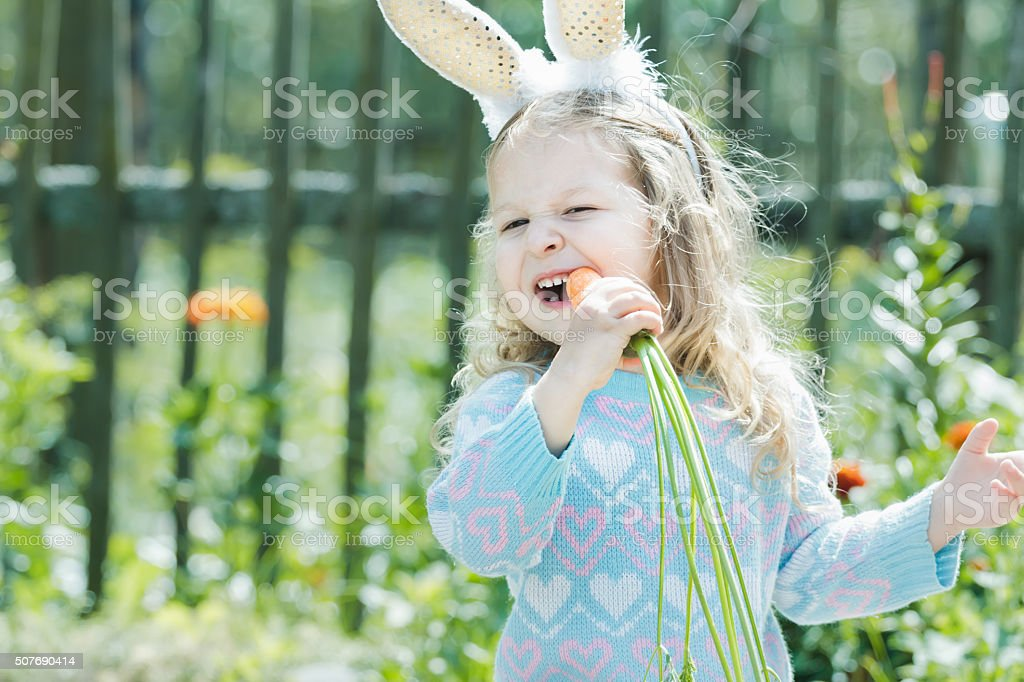 Toddler blonde girl in Easter bunny costume gnawing fresh carrot stock photo