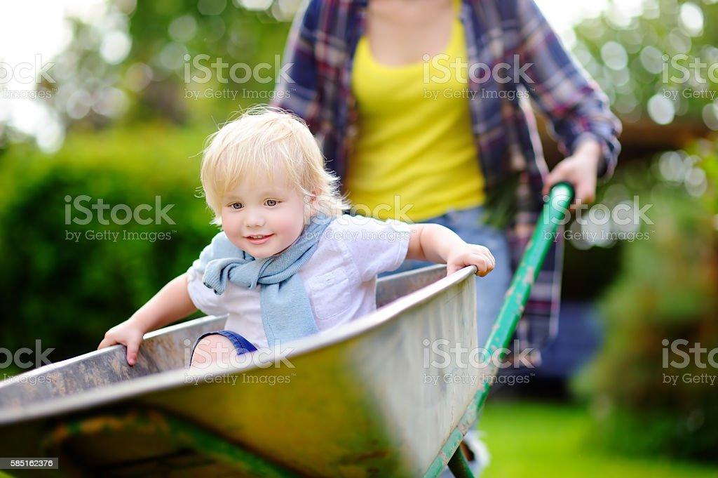 Toddler boy having fun in a wheelbarrow pushing by mum stock photo