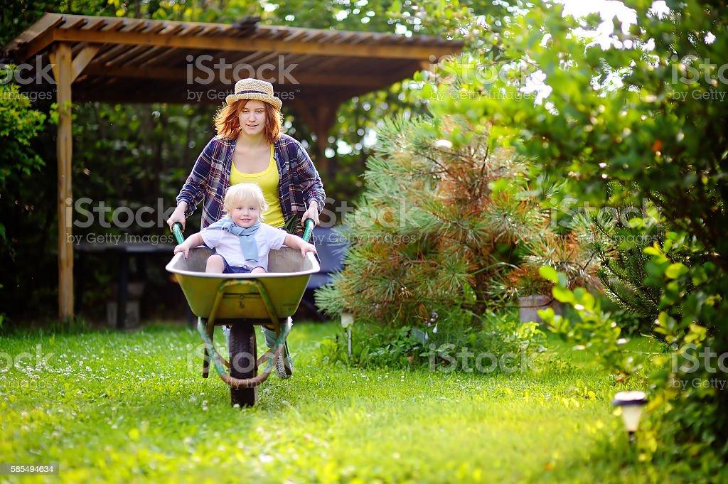 Toddler boy having fun in  wheelbarrow pushing by mum garden stock photo
