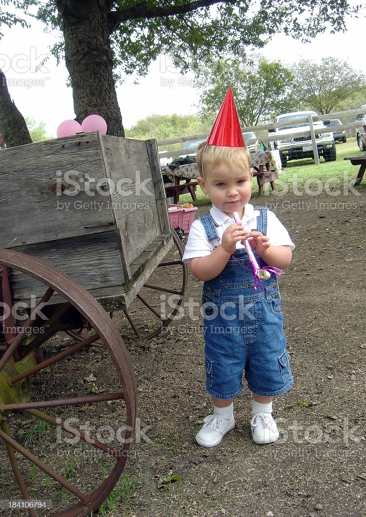 Toddler Boy Wearing A Birthday Hat Ready to Celebrate royalty-free stock photo