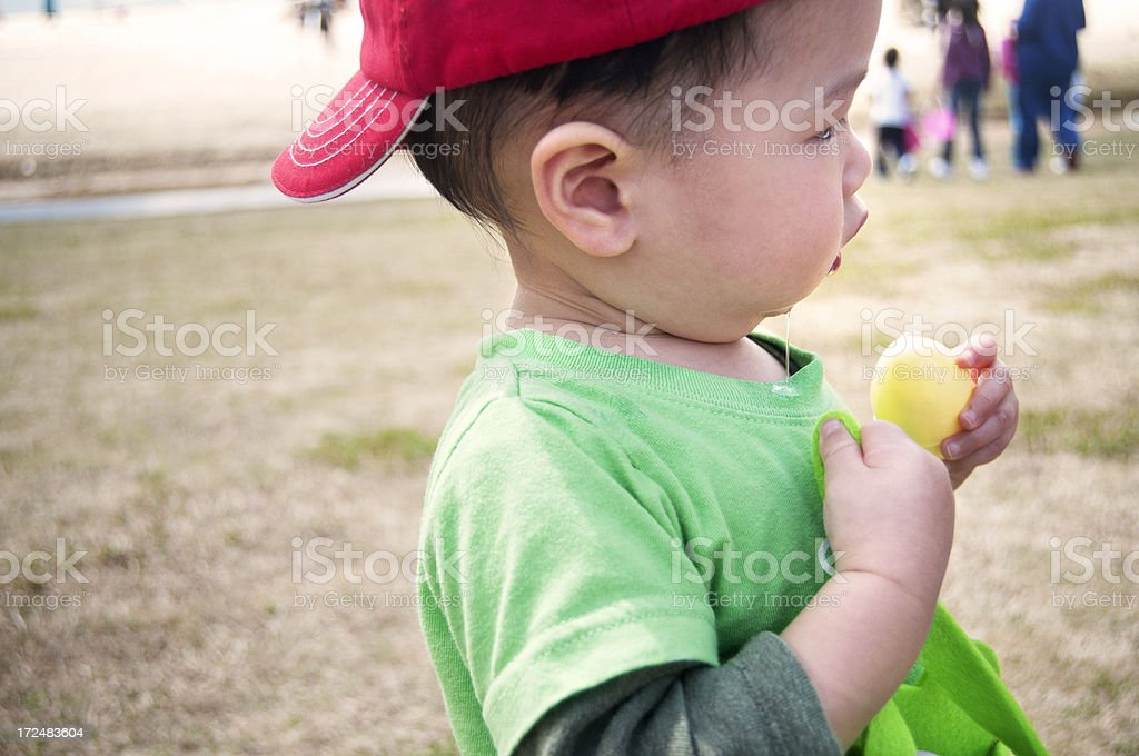 Toddler Easter Egg Hunting at a Park stock photo
