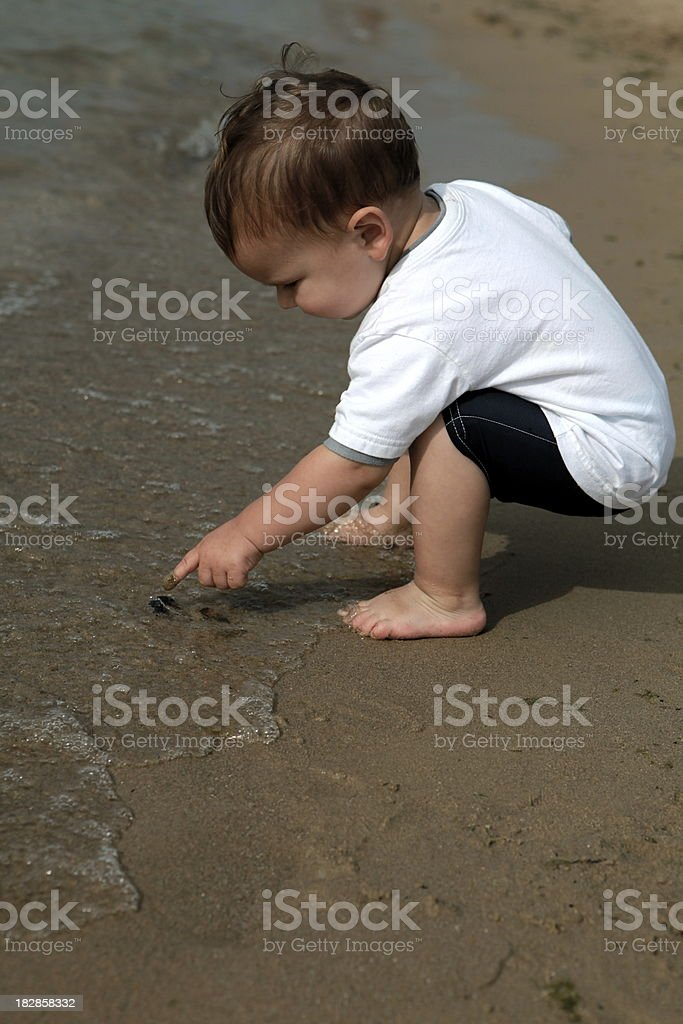 Toddler Exploring the Beach royalty-free stock photo