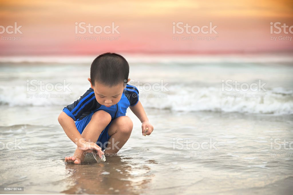 Toddler picking shell on the beach stock photo