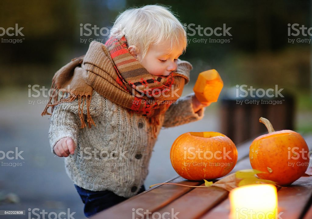 Toddler playing with halloween pumpkins stock photo