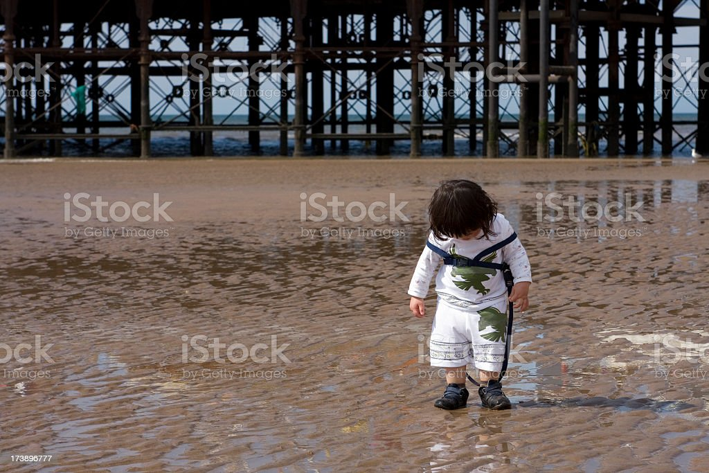 Toddler searching the beach stock photo