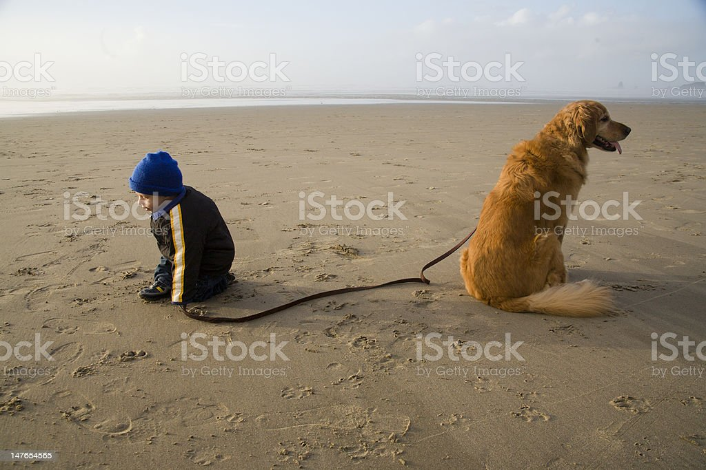 Toddler With Dog On The Beach. royalty-free stock photo
