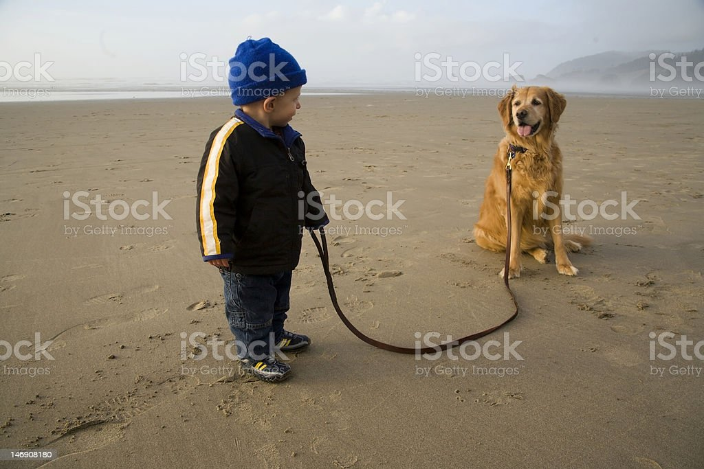 Toddler With His Dog On The Beach. royalty-free stock photo