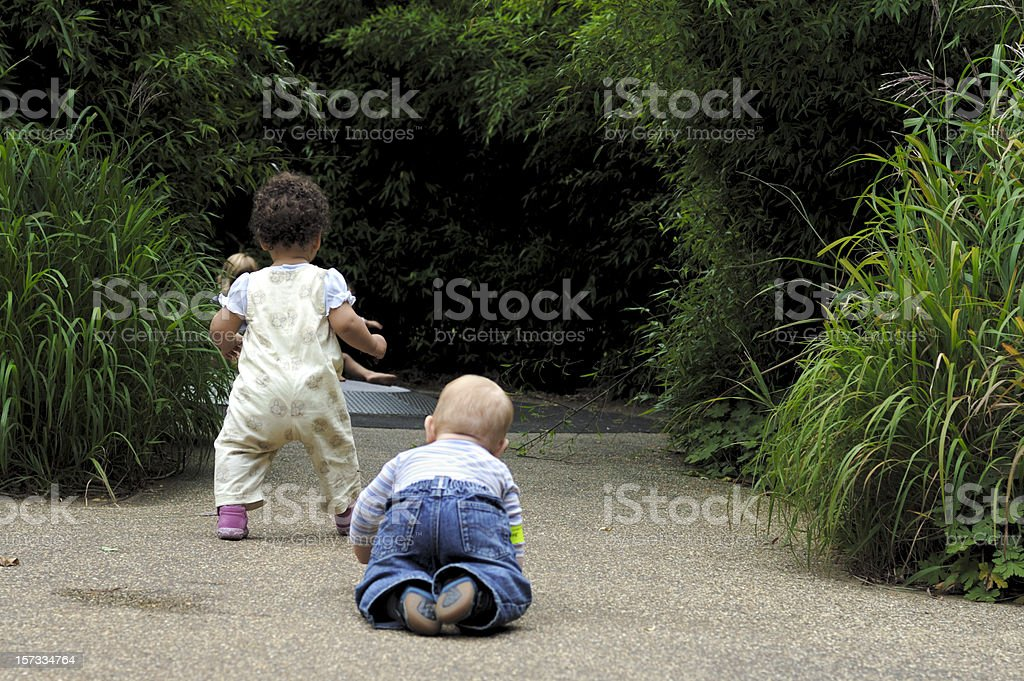 Toddlers Walking and Crawling royalty-free stock photo