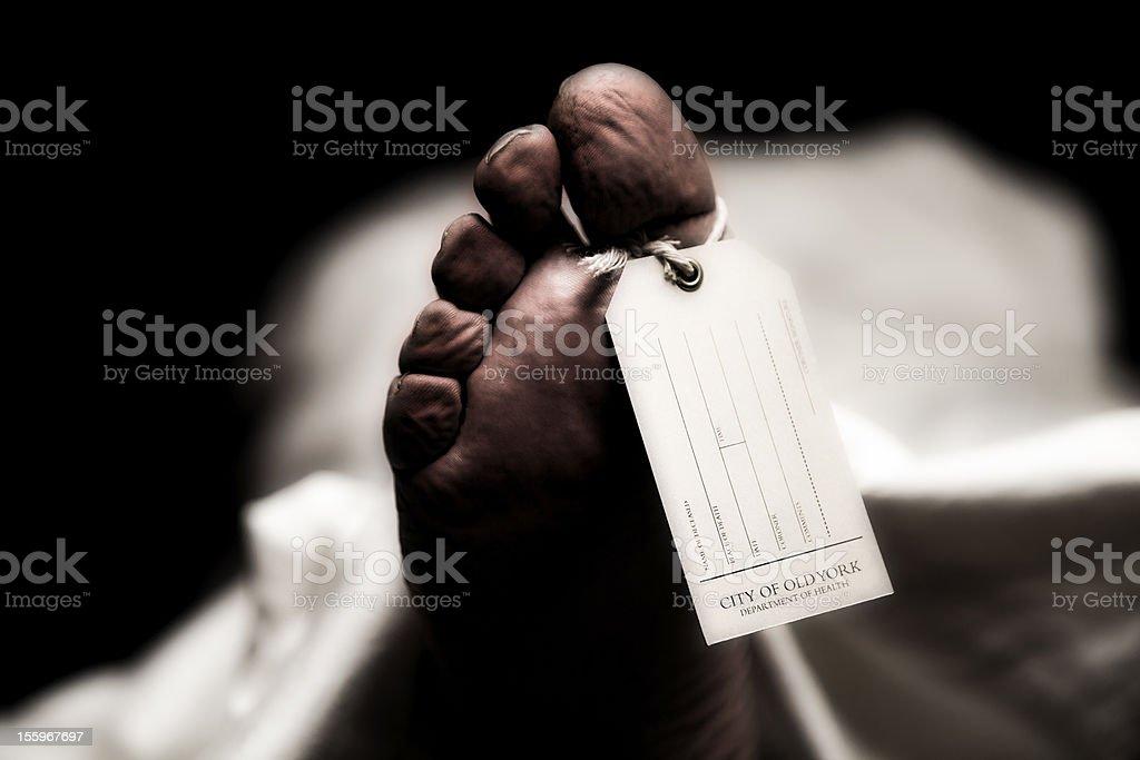 Toe Tag In Coroner's Office stock photo