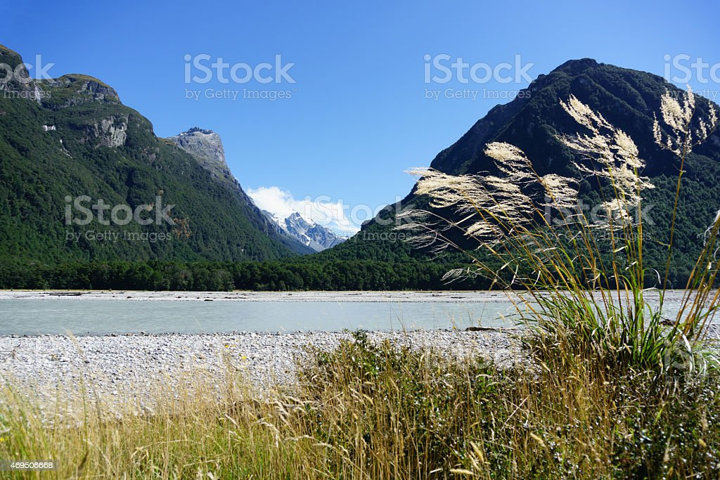 Toe-toe in breeze against Southern Alps landscape . stock photo