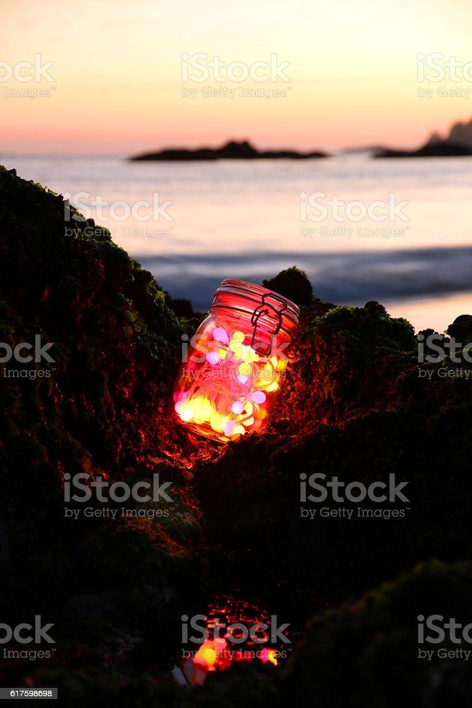 Tofino Fireflies stock photo
