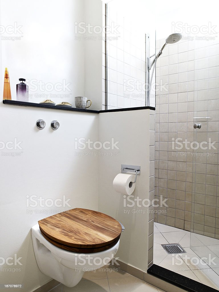 Toilet and shower corner with glass door royalty-free stock photo