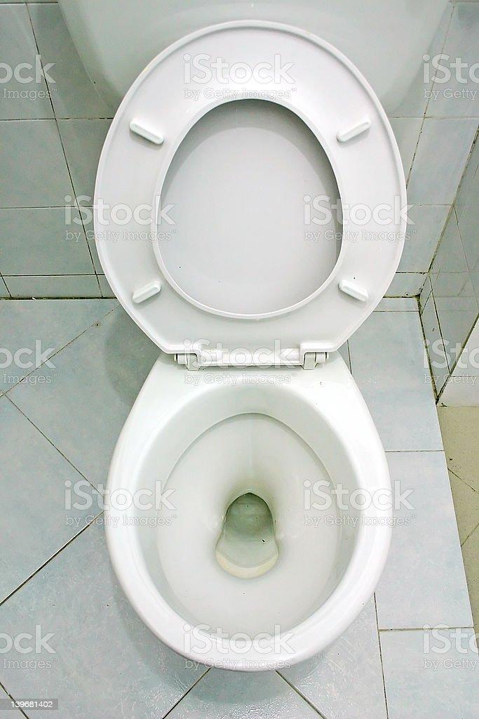 Toilet Bowl royalty-free stock photo