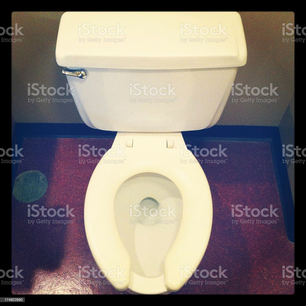 Toilet in a Bathroom royalty-free stock photo