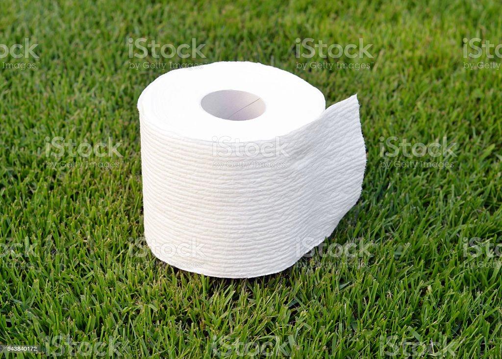 Toilet Paper Outdoors stock photo