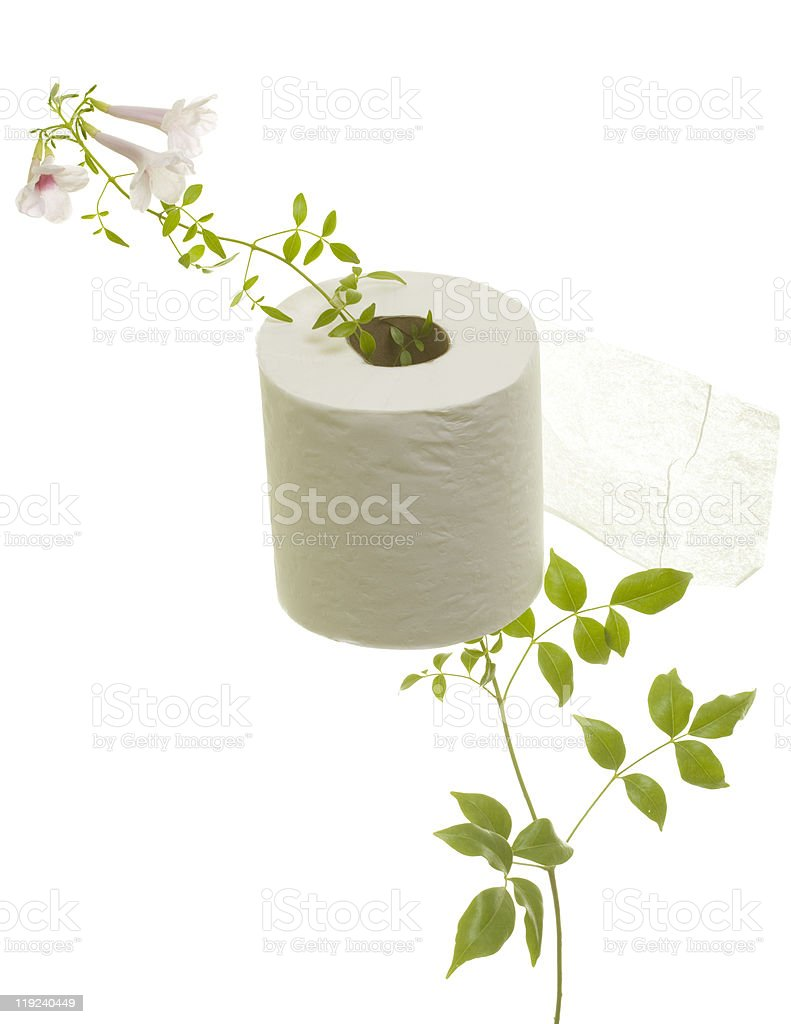 Toilet Paper with Flower Grown through stock photo