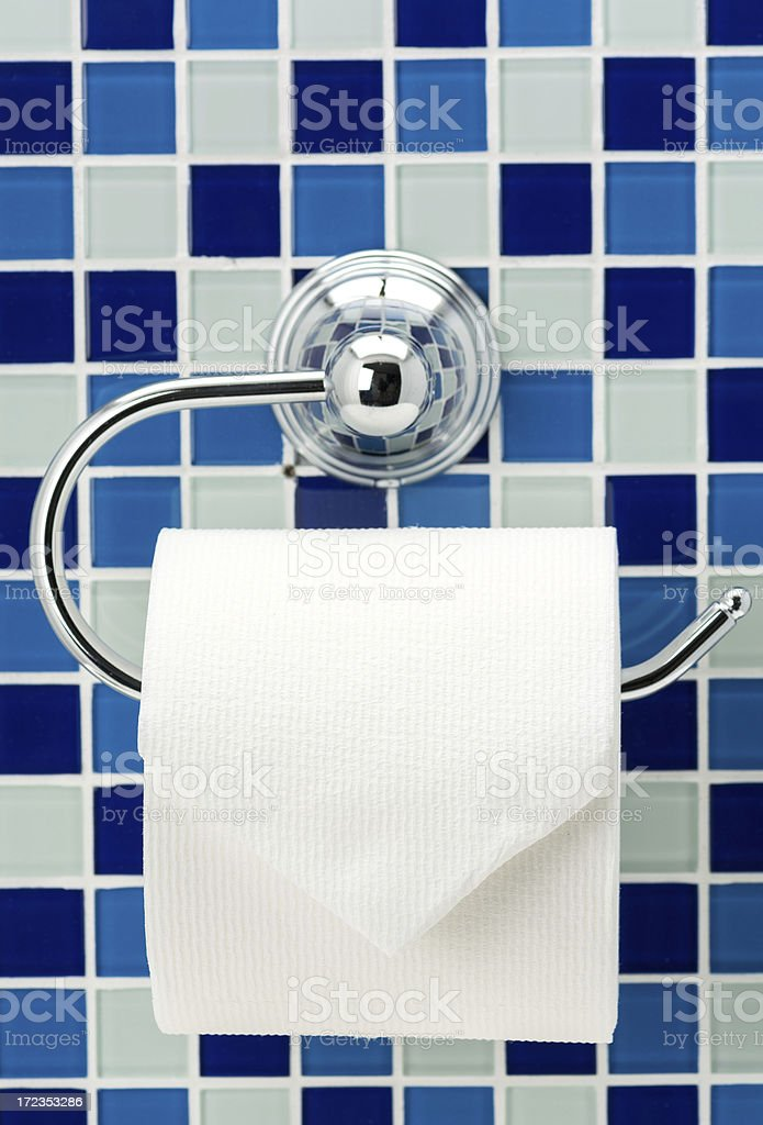 Toilet roll and holder royalty-free stock photo