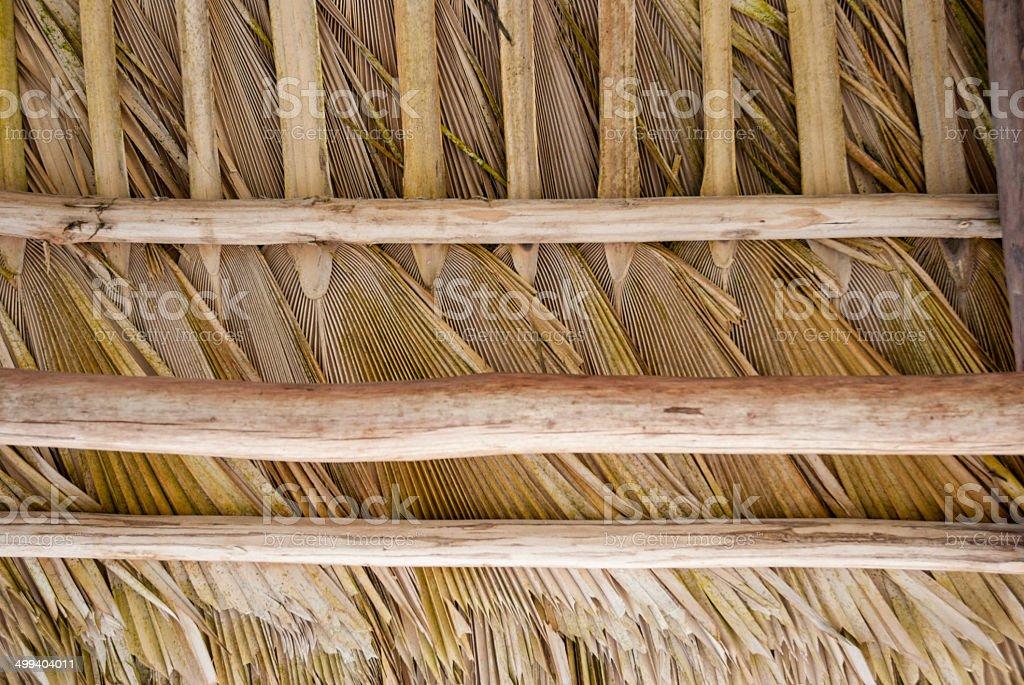 Toit palmier royalty-free stock photo