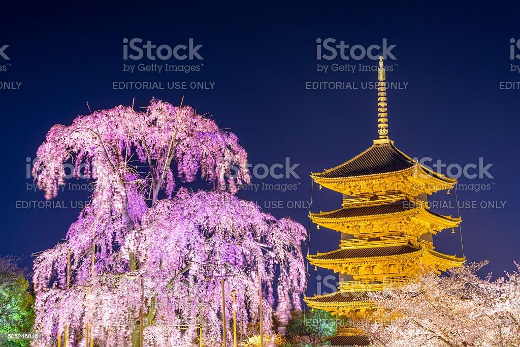 Toji Pagoda in Kyoto stock photo