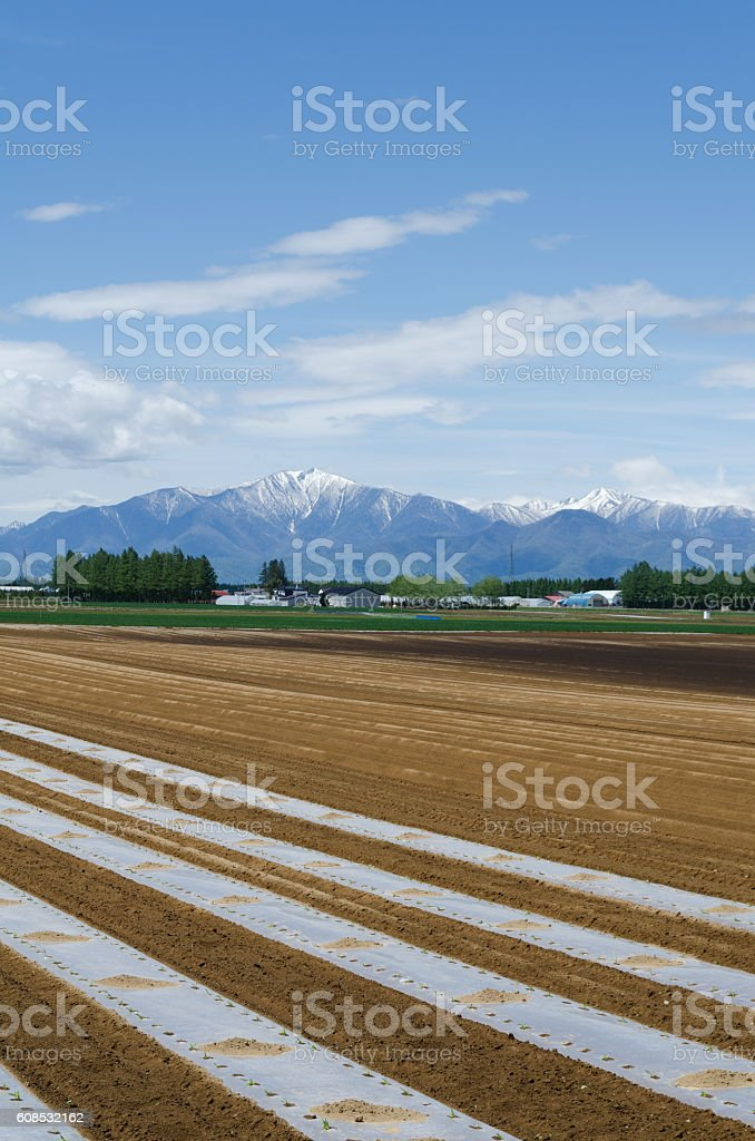 Tokachi landscape stock photo