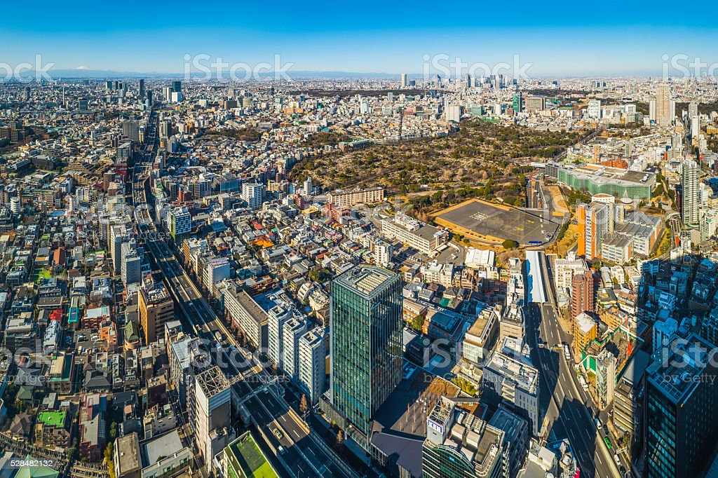 Tokyo aerial cityscape over crowded skyscrapers highways Mt Fuji Japan stock photo