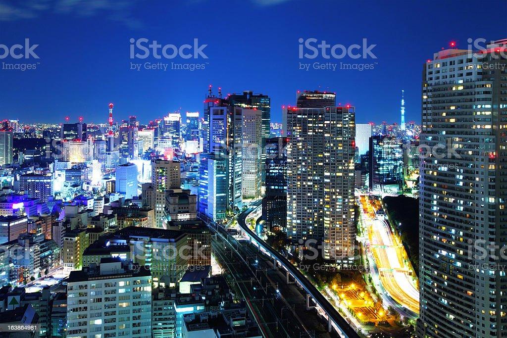 Tokyo city at night royalty-free stock photo