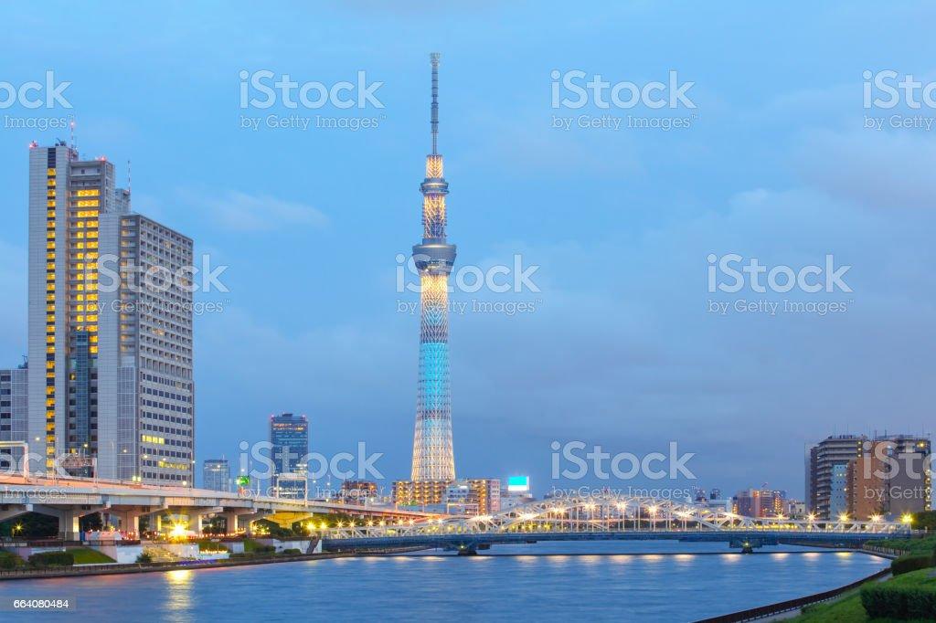 Tokyo city view stock photo