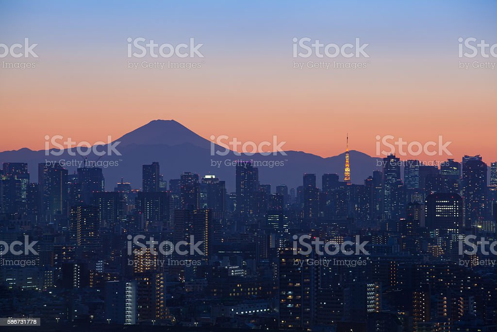 Tokyo city view with Mount Fuji and Tokyo tower landmark stock photo