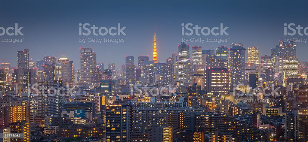 Tokyo city view with Tokyo tower in twilight stock photo