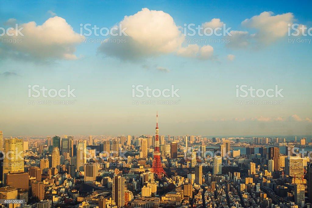 Tokyo City, viewed from Mori Tower stock photo