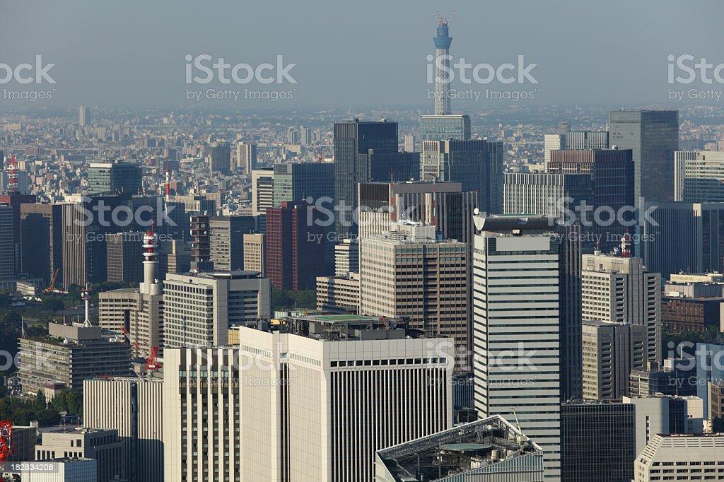 Tokyo Cityscape royalty-free stock photo