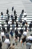 Tokyo Crosswalk Scene
