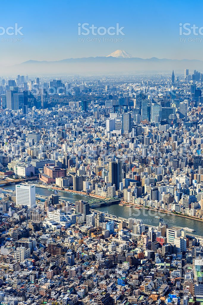 Tokyo from above stock photo