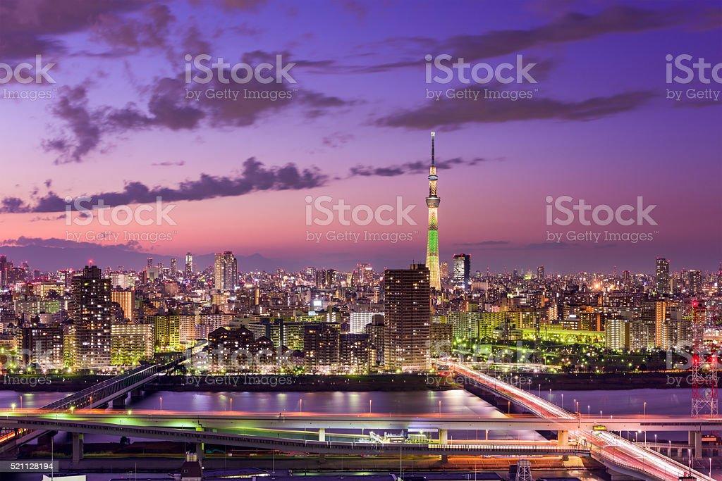 Tokyo Japan Skyline stock photo
