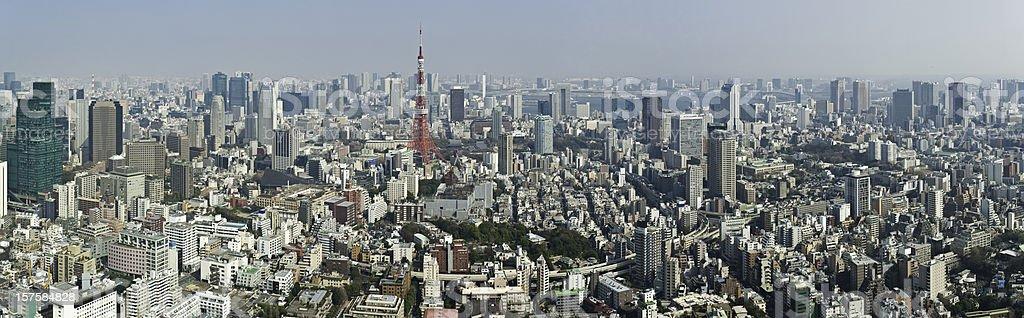 Tokyo landmark cityscape panorama crowded streets downtown skyscraper metropolis Japan royalty-free stock photo