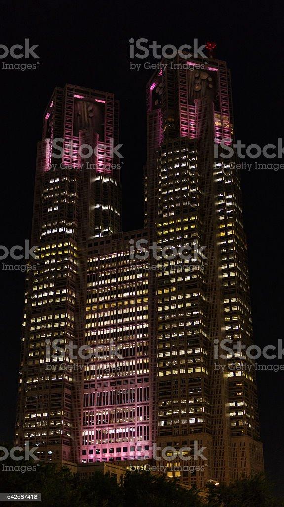 Tokyo Metropolitan Government Building in Shinjuku at night stock photo