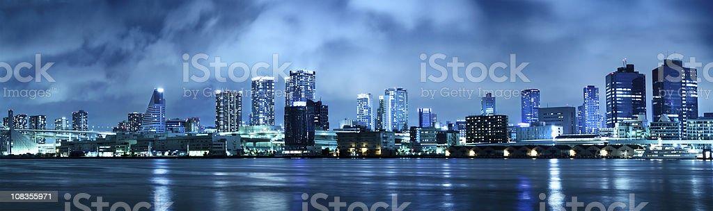 Tokyo panorama royalty-free stock photo