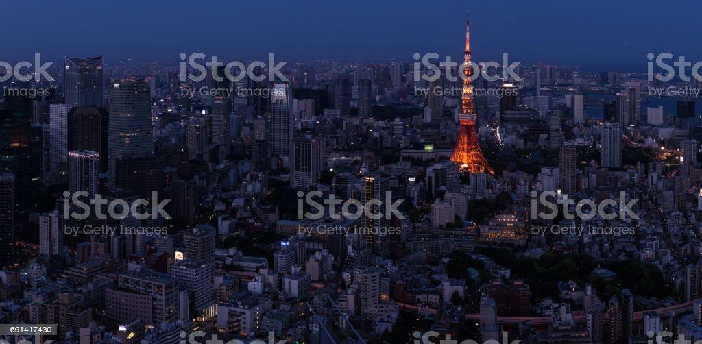 Tokyo panoramic view at dusk stock photo