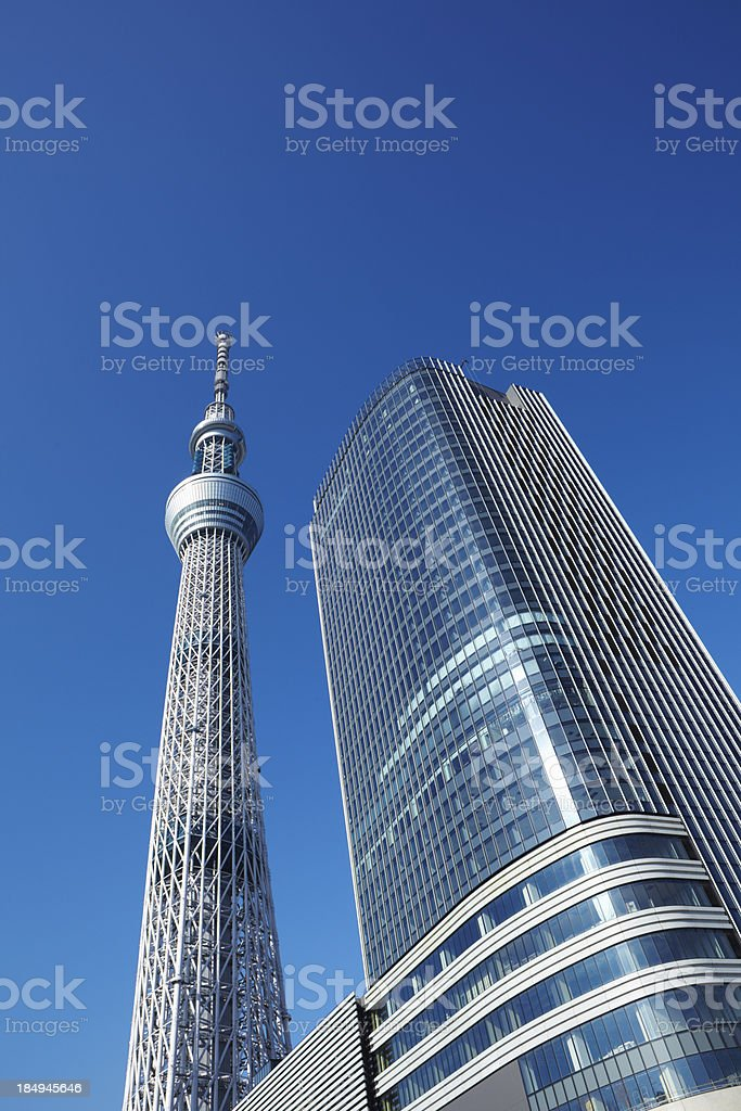 Tokyo Sky tree and office building stock photo