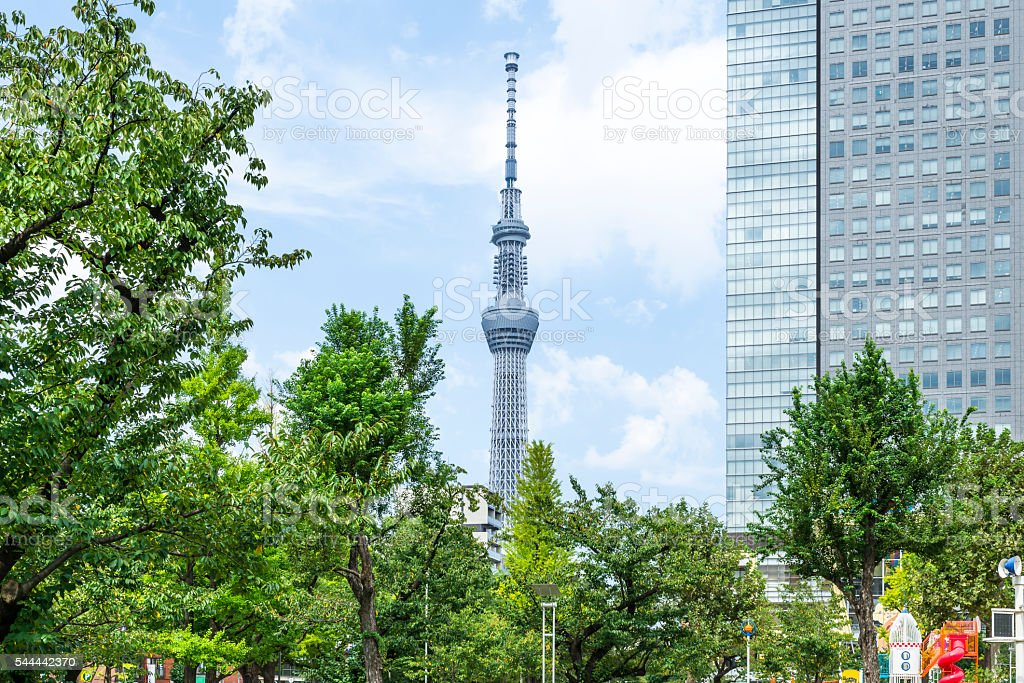 Tokyo Sky Tree seen from Kinshi park stock photo
