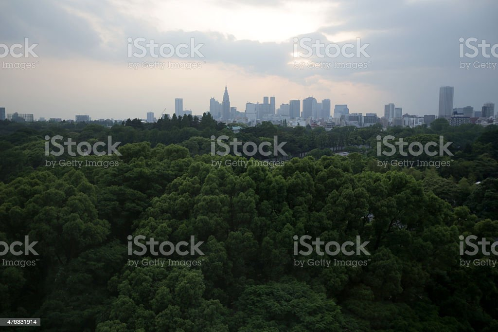 Tokyo Skyline and Green Foliage, Spring Morning in Japan stock photo