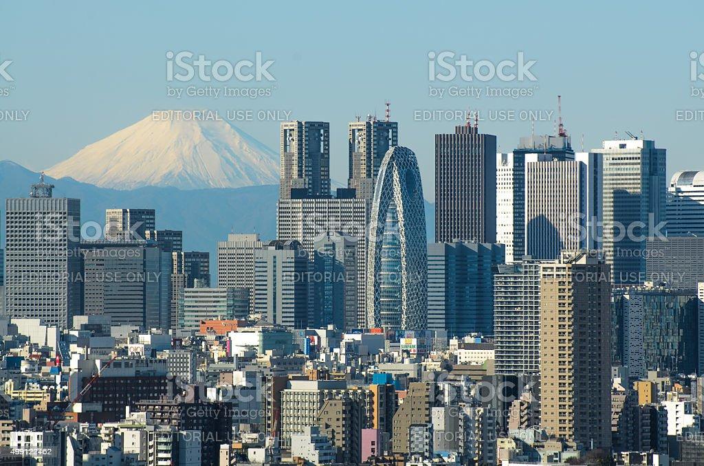 Tokyo Skyline and Mount Fuji stock photo