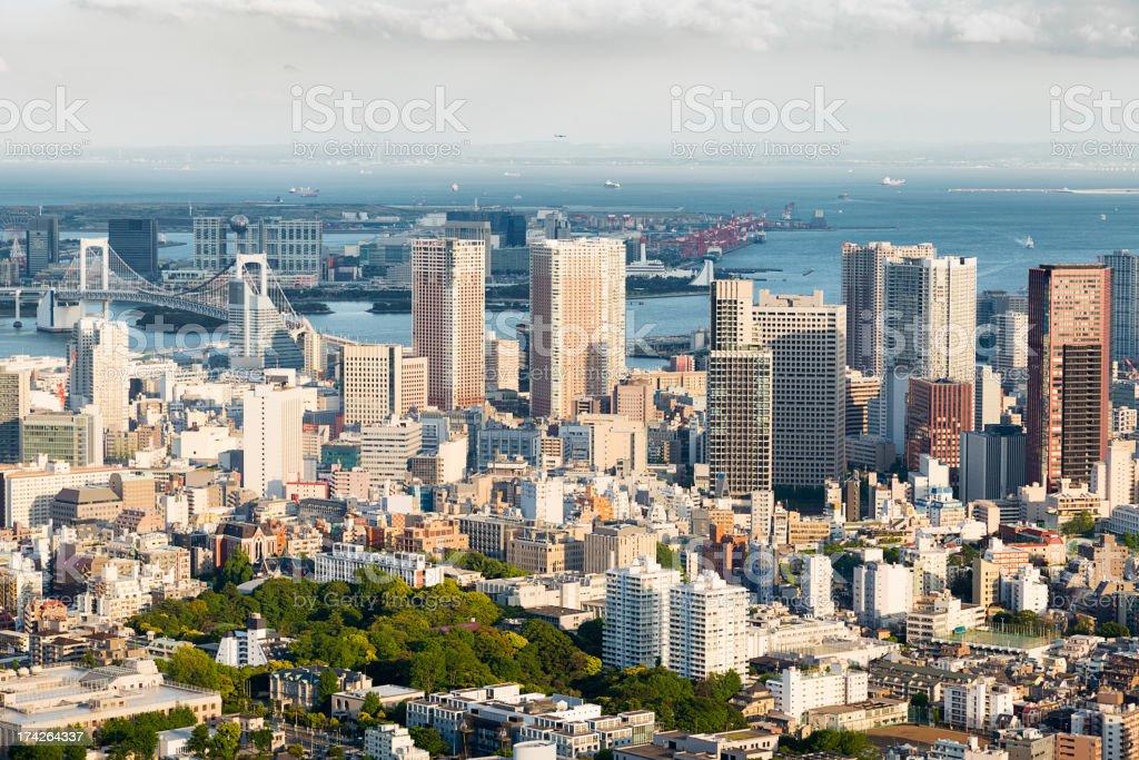 Tokyo Skyline royalty-free stock photo