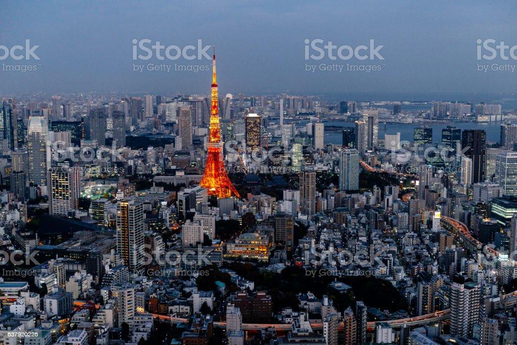 Tokyo Skyline stock photo