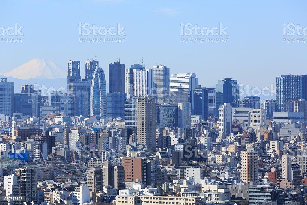 Tokyo Skyline with Mt Fuji in Japan stock photo